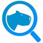 agencia-partner-google-capybara