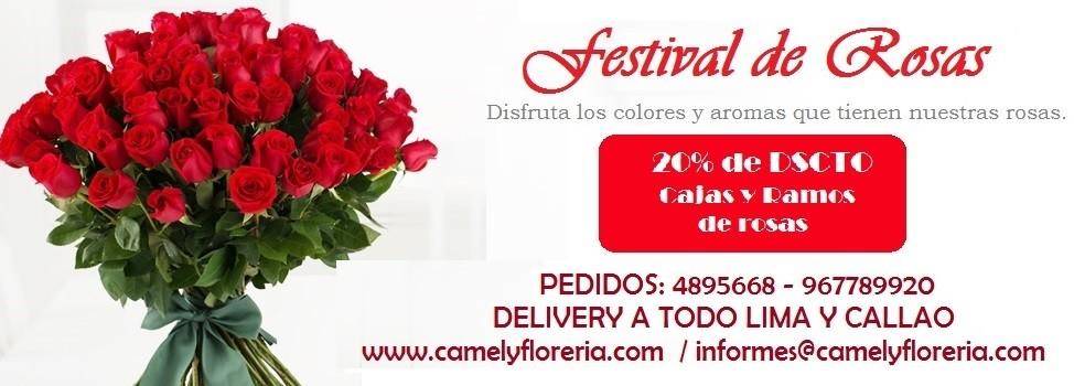floreria camely